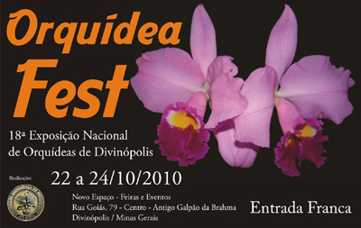 Cartaz 2010  menor cpia
